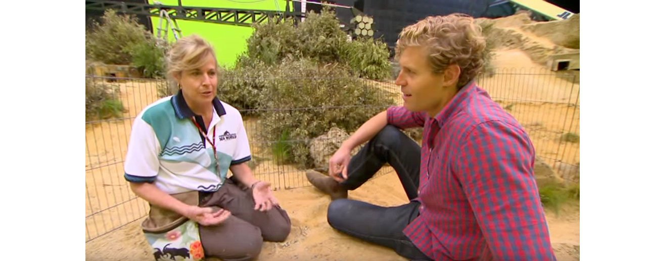 WATCH: Bondi Vet comes to Docklands Studios